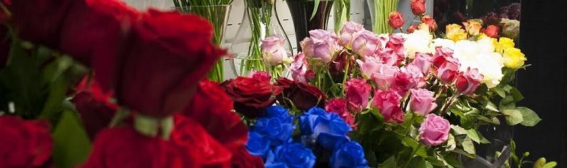 Reteaua de florarii Magnolia a deschis un magazin in Constanta – investitie de 35.000 de euro